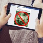 janes-domain-its-time-to-end-the-canna-ban-facebook